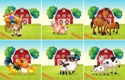 Seis cenas com os animais na exploração agrícola ilustração royalty free