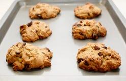 Seis cookies frescas do forno Imagem de Stock