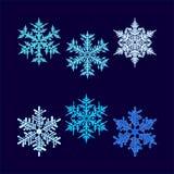 Seis copos de nieve hex.-formados hermosos del vector ilustración del vector