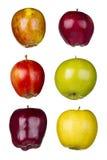 Seis diversas manzanas Imágenes de archivo libres de regalías