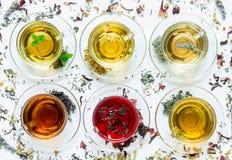 Seis diversos tipos de té foto de archivo