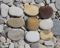 Seis eco del fondo de las piedras del mar Imagen de archivo