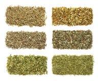 Seis ervas secadas nas fileiras Foto de Stock Royalty Free
