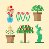 Seis espécies de plantas cultivadas domésticas Fotos de Stock