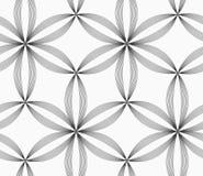 Seis flores rayadas grises delgadas monocromáticas del pedal Fotos de archivo