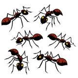 Seis formigas ilustração stock