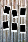Seis frames em branco da foto no bambu Fotos de Stock Royalty Free