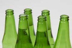 Seis garrafas de cerveja verdes no fundo branco Fotografia de Stock