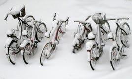 Seis homens das senhoras e bicicletas das crianças são nevados completamente imagens de stock royalty free