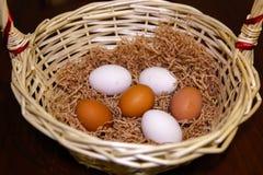 Seis huevos coloridos mienten en una cesta en una litera foto de archivo