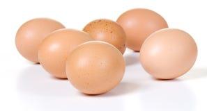 Seis huevos de Brown fotos de archivo