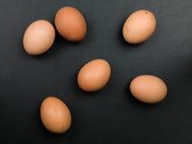 Seis huevos de gallinas libres crudos frescos de la gama Imagenes de archivo