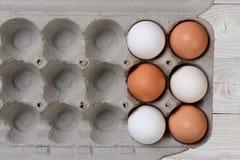 Seis huevos en cartón grande Imagenes de archivo