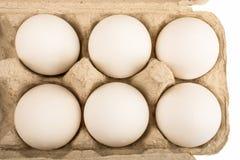 Seis huevos en una bandeja para el aislante de diez huevos Imagen de archivo