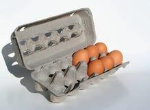 Seis huevos ponen en cortocircuito Imagenes de archivo