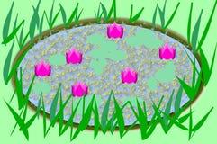 Seis Lotus Flowers em uma lagoa de água do ouro Fotografia de Stock Royalty Free