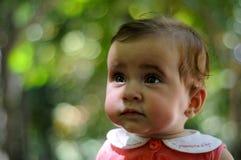 Seis meses del bebé que se divierte al aire libre Imagen de archivo