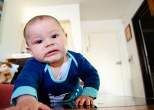 Seis meses lindos del beb? que babea en la Flor y que hace caras divertidas imagen de archivo libre de regalías