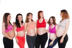 Seis mujeres embarazadas de la felicidad joven, colocándose Fotografía de archivo