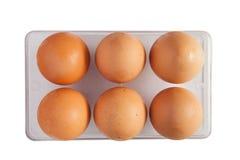 Seis ovos Fotografia de Stock