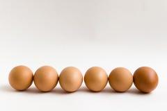 Seis ovos Fotos de Stock