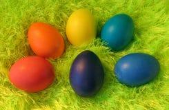 Seis ovos de easter no tapete shaggy verde fotografia de stock
