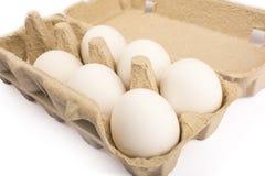 Seis ovos em uma bandeja para o isolado de dez ovos Imagens de Stock Royalty Free