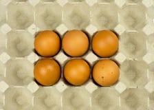 Seis ovos na bandeja de papel Fotos de Stock Royalty Free