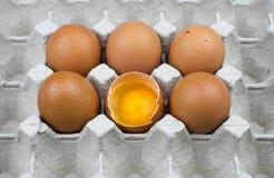 Seis ovos na bandeja de papel Fotos de Stock