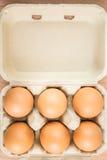 Seis ovos na caixa de ovo Imagem de Stock Royalty Free