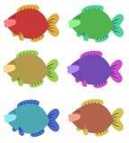 Seis peixes coloridos Imagem de Stock