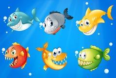 Seis peixes coloridos sob o mar profundo Imagens de Stock Royalty Free
