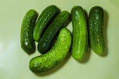 Seis pepinos verdes em um fundo claro Imagem de Stock Royalty Free
