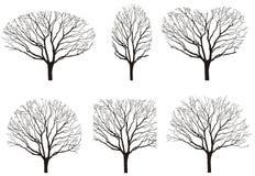 Seis siluetas de árbol Imagen de archivo libre de regalías