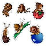 Seis slugs Imagem de Stock Royalty Free