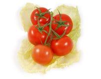 Seis tomates Fotografia de Stock Royalty Free