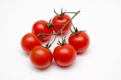 Seis tomates de cereza en una rama Fotos de archivo