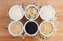 Seis variedades de arroz crudo Imagen de archivo libre de regalías