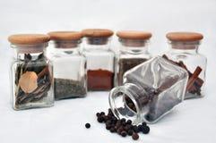 Seis vidrios de especia y de pimienta inglesa foto de archivo