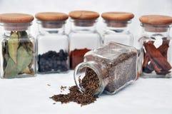 Seis vidrios del germen de la especia y de alcaravea fotografía de archivo