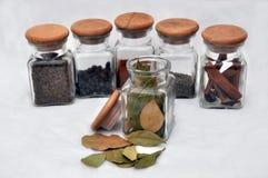 Seis vidros da especiaria e da folha de louro derramadas para fora Foto de Stock Royalty Free