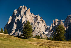 Seiser alm. Dolomite peaks with field and lonely trees. Langkoffel, Seiser Alm, Italy Stock Photo