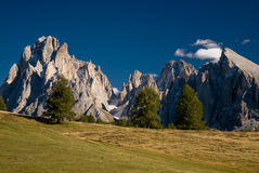 Seiser alm. Dolomite peaks with field and lonely trees. Langkoffel, Seiser Alm, Italy Stock Photos