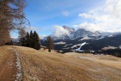 Seiser Alm con il gruppo di Langkofel Il Tirolo del sud Immagini Stock