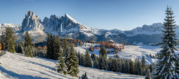 Seiser Alm, Dolomites meadow in winter Royalty Free Stock Photo