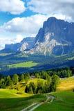 Seiser Alm, il prato alpino di più grande elevata altitudine in Europa, montagne rocciose di stordimento sui precedenti Immagini Stock