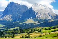 Seiser Alm, il prato alpino di più grande elevata altitudine in Europa, montagne rocciose di stordimento sui precedenti Fotografia Stock