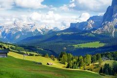 Seiser Alm, il prato alpino di più grande elevata altitudine in Europa, montagne rocciose di stordimento sui precedenti Immagine Stock