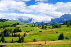 Seiser Alm, il prato alpino di più grande elevata altitudine in Europa, montagne rocciose di stordimento sui precedenti Fotografie Stock Libere da Diritti