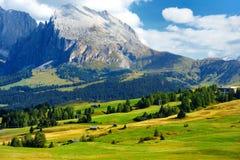 Seiser Alm, il prato alpino di più grande elevata altitudine in Europa, montagne rocciose di stordimento sui precedenti Immagine Stock Libera da Diritti